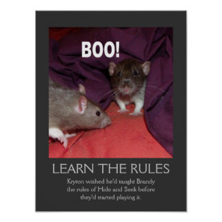 Learn the rules poster