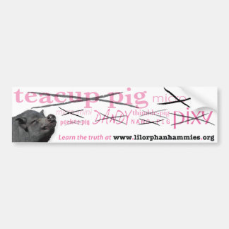 Learn the Truth! Car Bumper Sticker