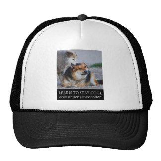 learn to stay cool hat