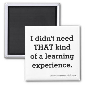 Learning Experience - Magnet