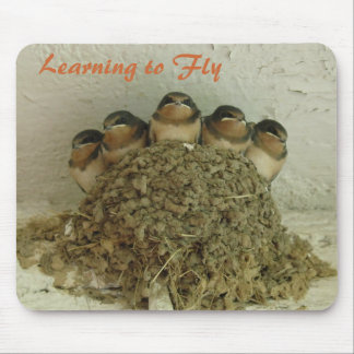 Learning to Fly Mouse Pad
