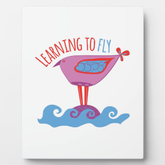 Learning to Fly Display Plaques