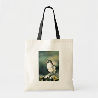 Least Auklets Tote Bag