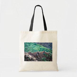 Least Auklets on Bluff Edge Canvas Bag