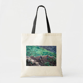 Least Auklets on Bluff Edge Budget Tote Bag