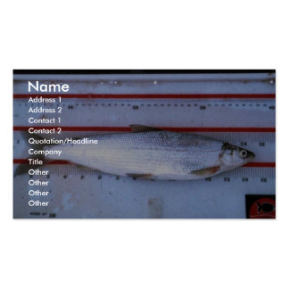 Least Cisco Business Card