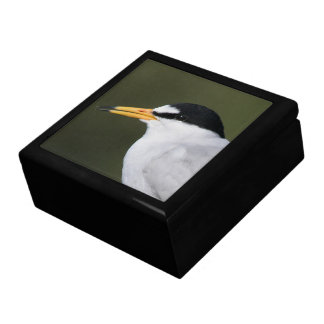 Least Tern Gift Boxes