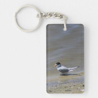 Least Tern Keychain