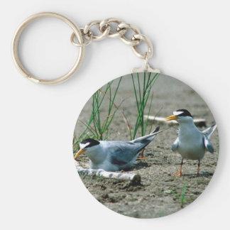 Least Terns Keychain