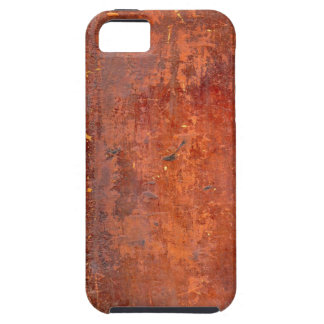 Leather Bound Antique Book Cover iPhone 5 Case