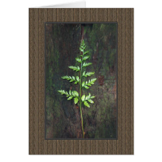 Leather Fern Card