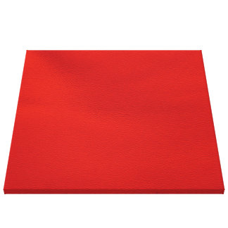 leather structure,red canvas print