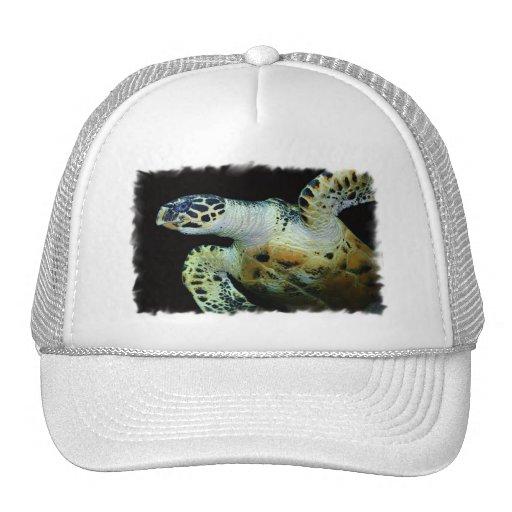 Leatherback Sea Turtle Baseball Hat
