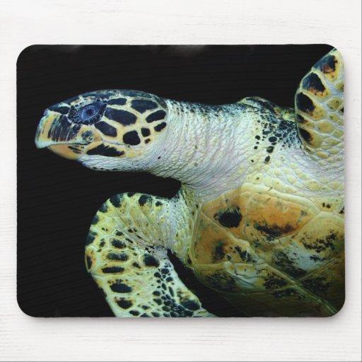 Leatherback Sea Turtle Mouse Pad