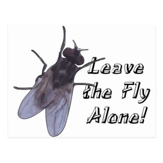 Leave the Fly Alone Postcard