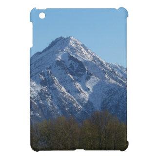 Leavenworth iPad Mini Cover
