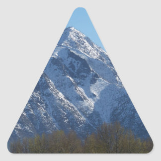 Leavenworth Triangle Sticker