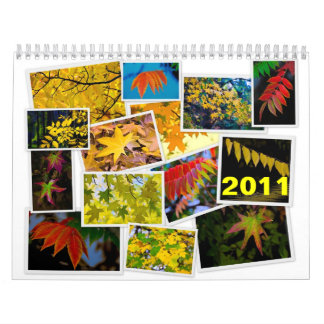 leaves, 2011 calendar