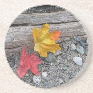 Leaves Adrift Coaster