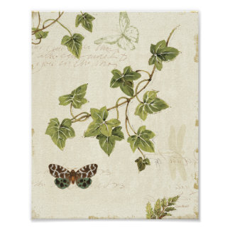 Leaves and a Butterfly Print