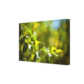 Leaves and bokeh canvas print