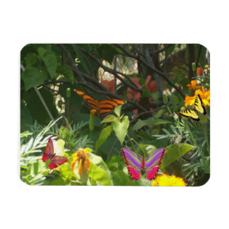 Leaves and Butterflies Premium Magnet