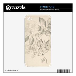 Leaves and Flowers - British 19th century iPhone 4S Decal