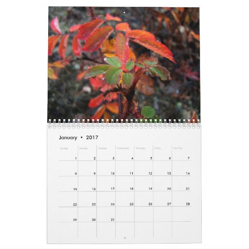 Leaves and Flowers with Water Droplets Calendar