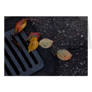 Leaves and Grate Card