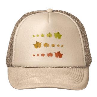 Leaves and seasons mesh hats