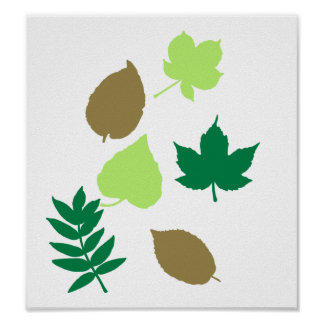 Leaves autumn posters