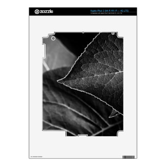 leaves being skins for iPad 3