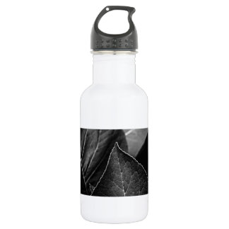 leaves being stainless steel water bottle
