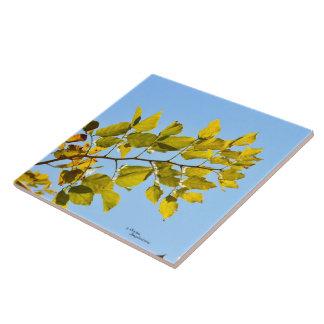 Leaves branch Tile