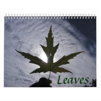 Leaves Calendar 2008