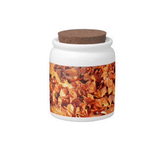 Leaves carpet in autumn candy jars