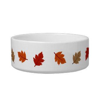 leaves cat food bowl