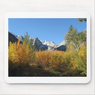 leaves changing with snowy mountains mouse pad