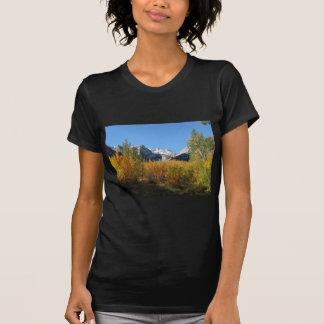 leaves changing with snowy mountains shirts