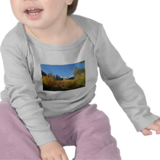 leaves changing with snowy mountains shirt