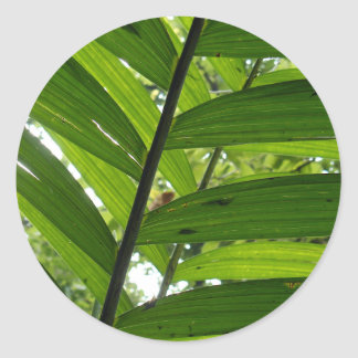 Leaves Classic Round Sticker