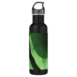 Leaves Closeup in Light and Shadow 24oz Water Bottle