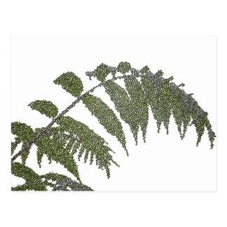 leaves (digital image) postcard