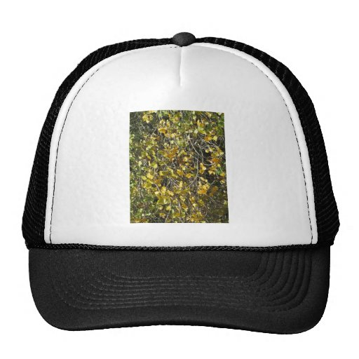Leaves fall trucker hat