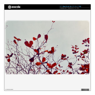leaves for laptop skin for the MacBook air