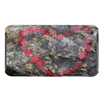 Leaves Forming Heart Shape Barely There iPod Cover