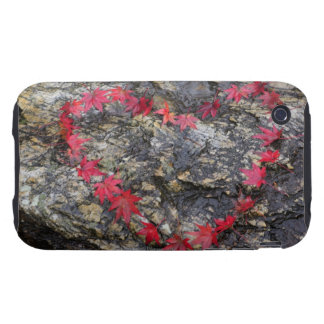 Leaves Forming Heart Shape Tough iPhone 3 Cover