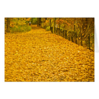 LEAVES GONE WILD NOTE CARD