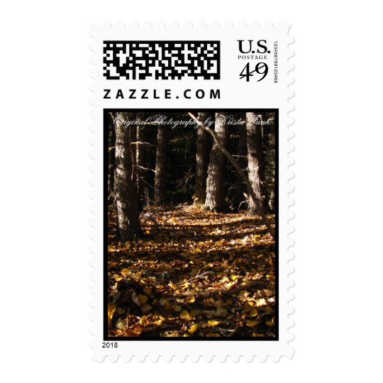 Leaves in a Shadowy Forest Stamp