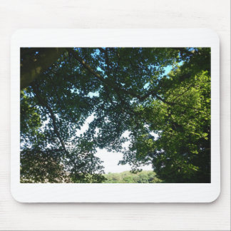 Leaves in Sunshine Mouse Pad